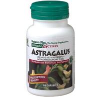 ASTRAGALUS 60 CAPS