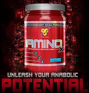 AMINO X FRUIT PUNCH435 GM