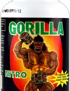 Gorilla Nitro